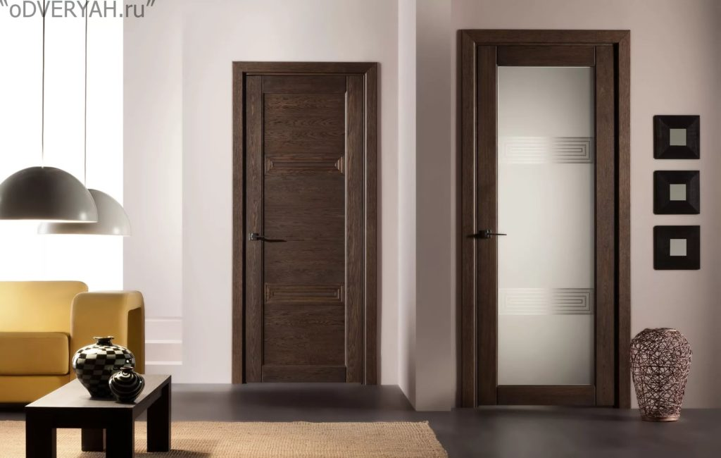 Двери экошпон: плюсы и минусы такого межкомнатного полотна